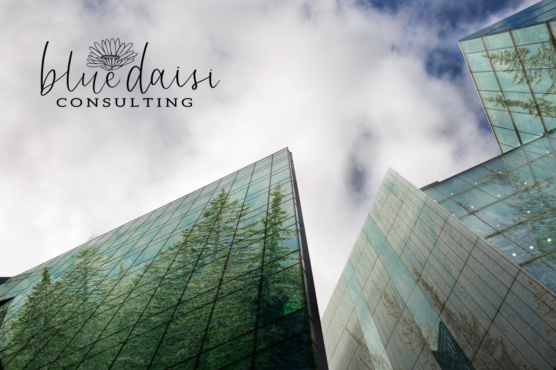 Blue Daisi Consulting