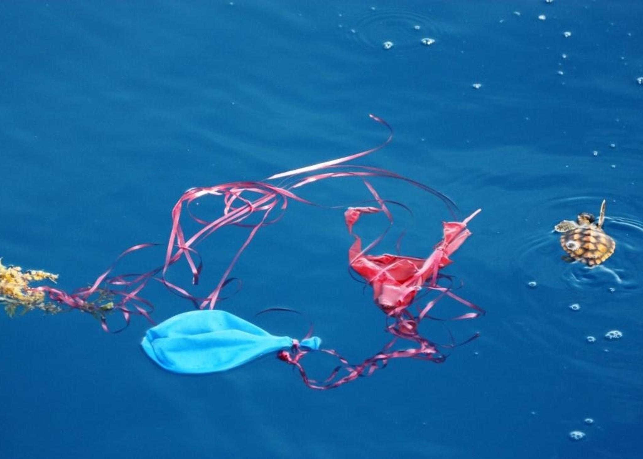 pollution balloons turtle